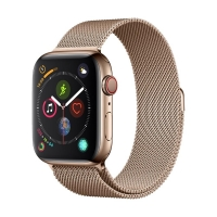 Apyrankė Devia Elegant Milanese 40mm Apple Watch auksinė